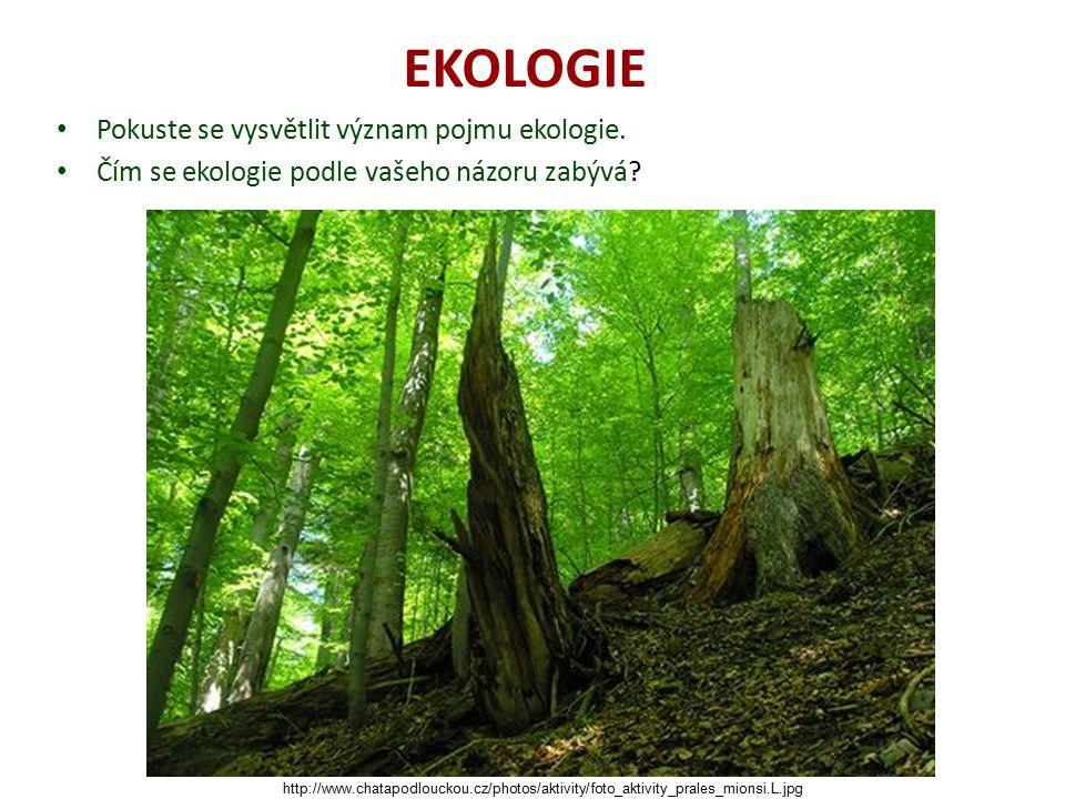 EKOLOGIE Pokuste se vysvětlit význam pojmu ekologie. Čím se ekologie podle vašeho názoru zabývá? http://www.chatapodlouckou.cz/photos/aktivity/foto_ak