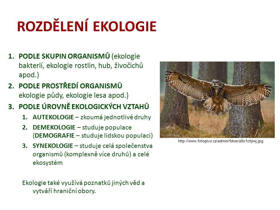 ROZDĚLENÍ EKOLOGIE 1.PODLE SKUPIN ORGANISMŮ (ekologie bakterií, ekologie rostlin, hub, živočichů apod.) 2.PODLE PROSTŘEDÍ ORGANISMŮ ekologie půdy, eko