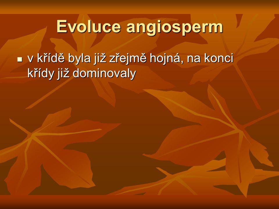 Evoluce angiosperm v křídě byla již zřejmě hojná, na konci křídy již dominovaly v křídě byla již zřejmě hojná, na konci křídy již dominovaly