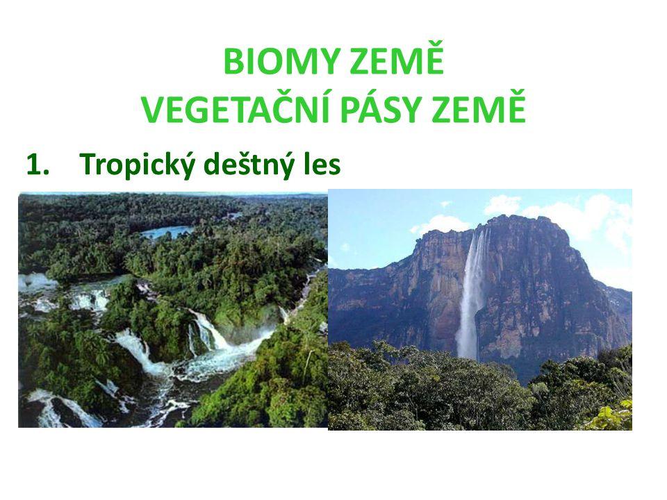 BIOMY ZEMĚ VEGETAČNÍ PÁSY ZEMĚ 1.Tropický deštný les