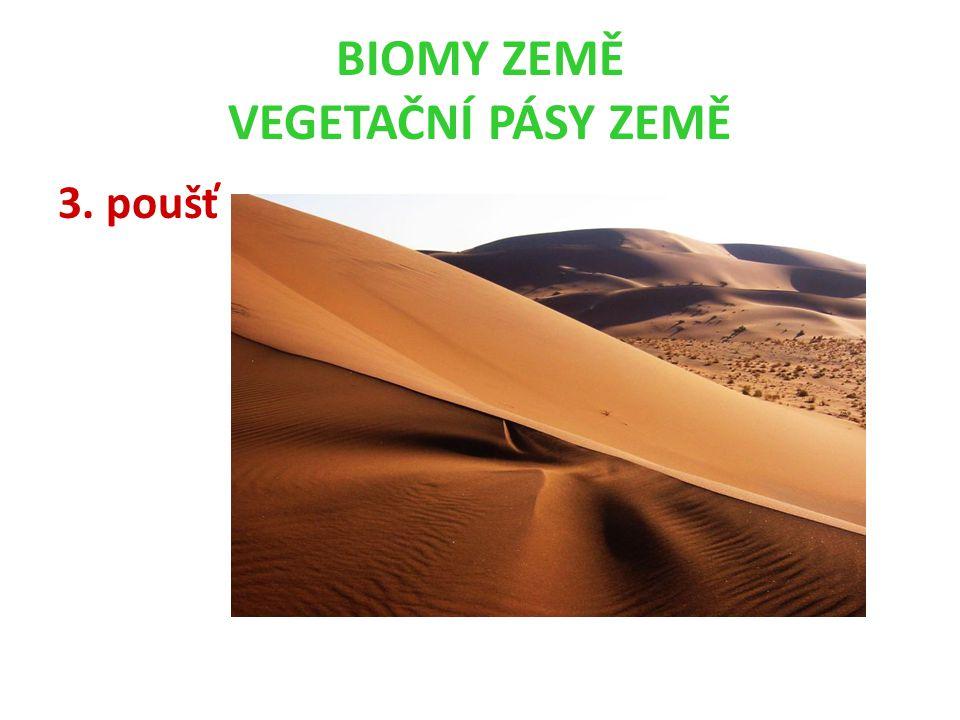 BIOMY ZEMĚ VEGETAČNÍ PÁSY ZEMĚ 3. poušť