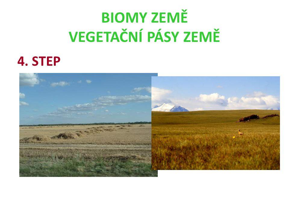 BIOMY ZEMĚ VEGETAČNÍ PÁSY ZEMĚ 4. STEP