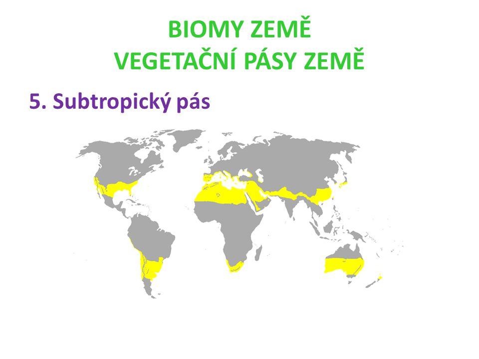 BIOMY ZEMĚ VEGETAČNÍ PÁSY ZEMĚ 5. Subtropický pás
