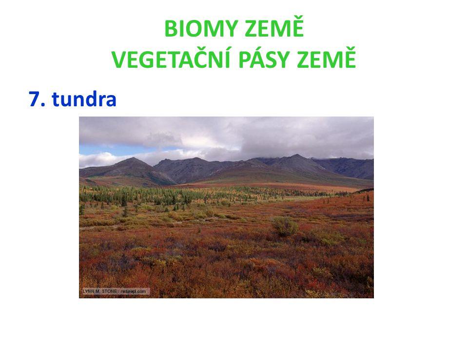 BIOMY ZEMĚ VEGETAČNÍ PÁSY ZEMĚ 7. tundra
