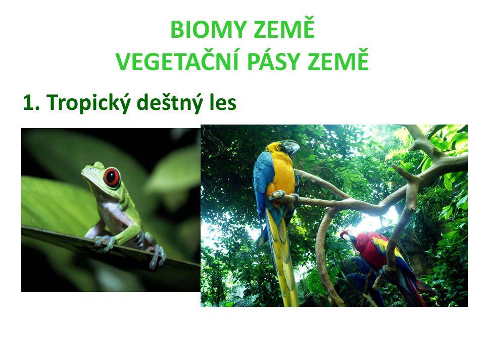 BIOMY ZEMĚ VEGETAČNÍ PÁSY ZEMĚ 1. Tropický deštný les