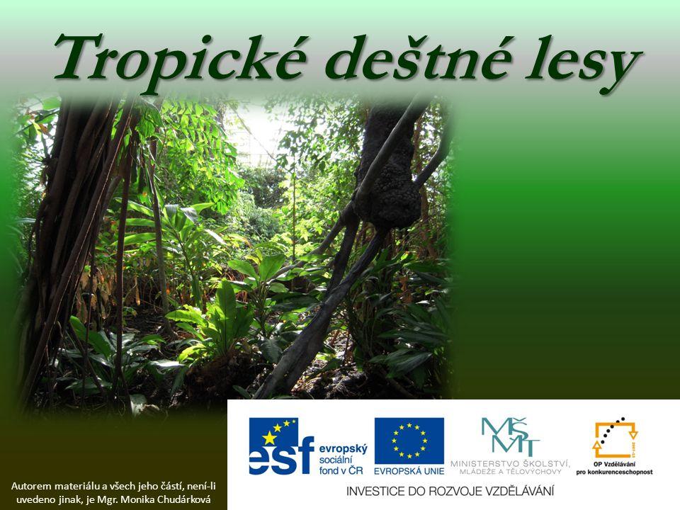 Tropické deštné lesy Autorem materiálu a všech jeho částí, není-li uvedeno jinak, je Mgr.