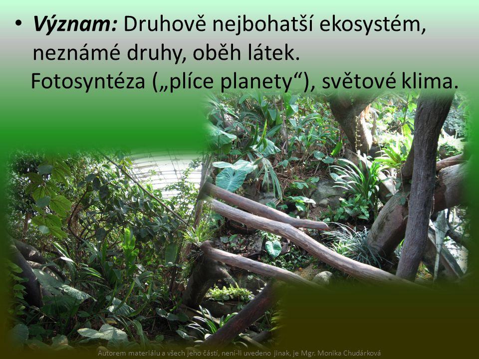 """Význam: Druhově nejbohatší ekosystém, neznámé druhy, oběh látek. Fotosyntéza (""""plíce planety""""), světové klima. Autorem materiálu a všech jeho částí, n"""