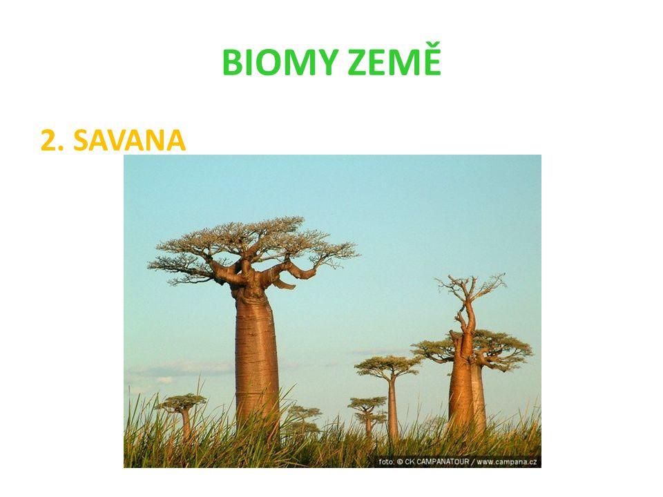 BIOMY ZEMĚ 2. SAVANA