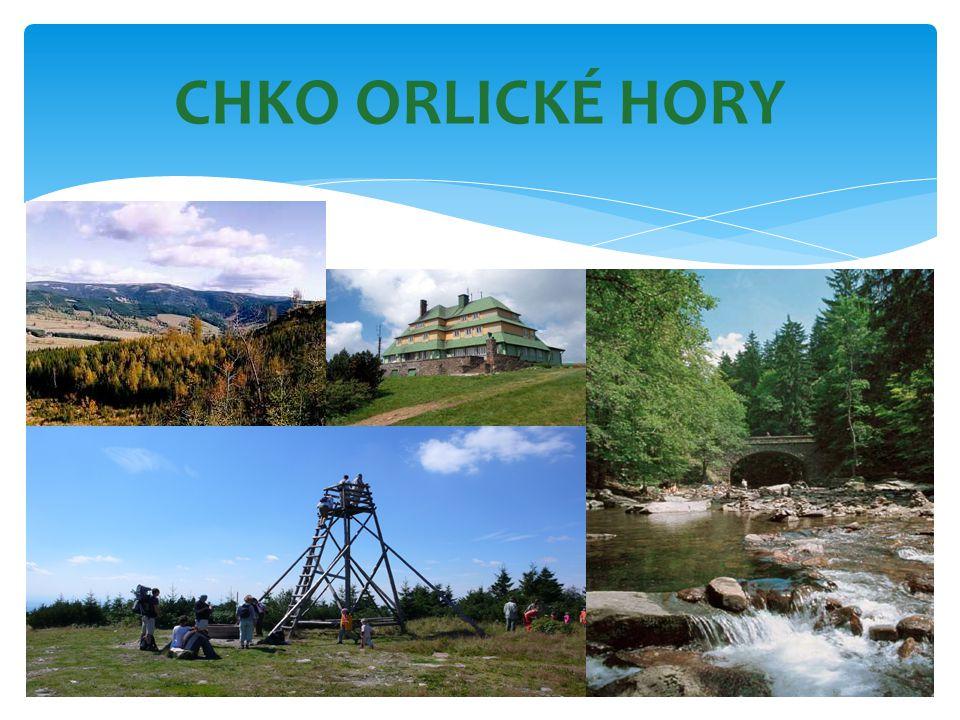 CHKO ORLICKÉ HORY