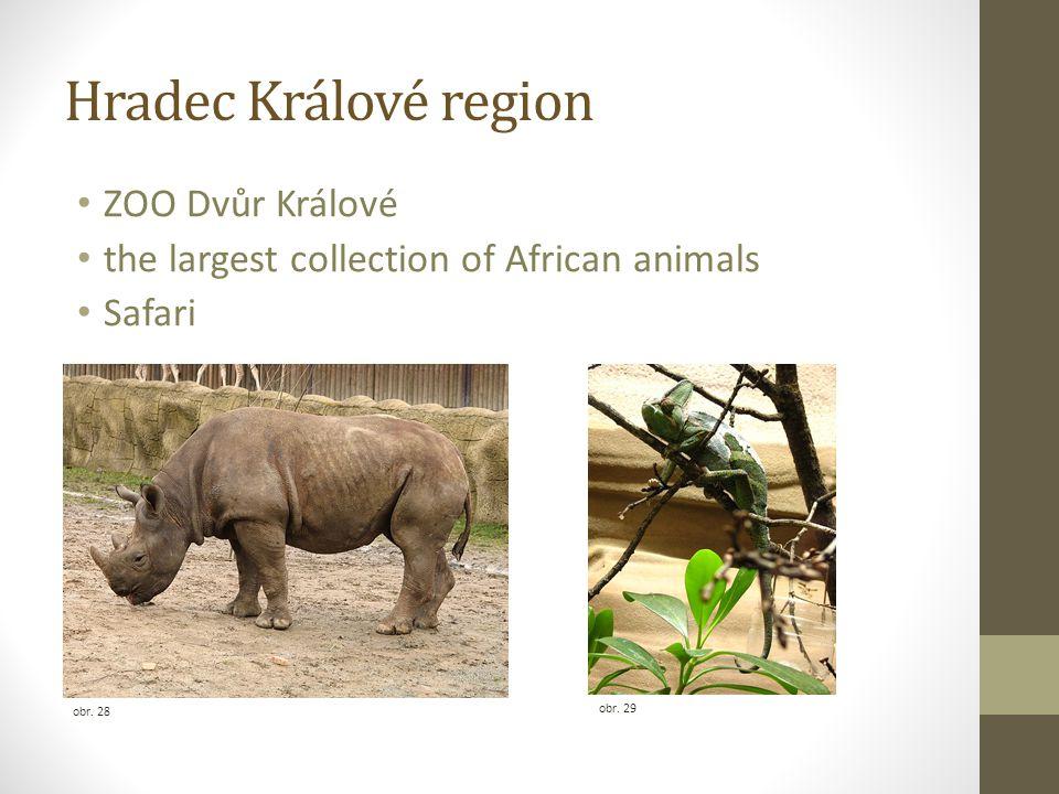 Hradec Králové region ZOO Dvůr Králové the largest collection of African animals Safari obr. 29 obr. 28