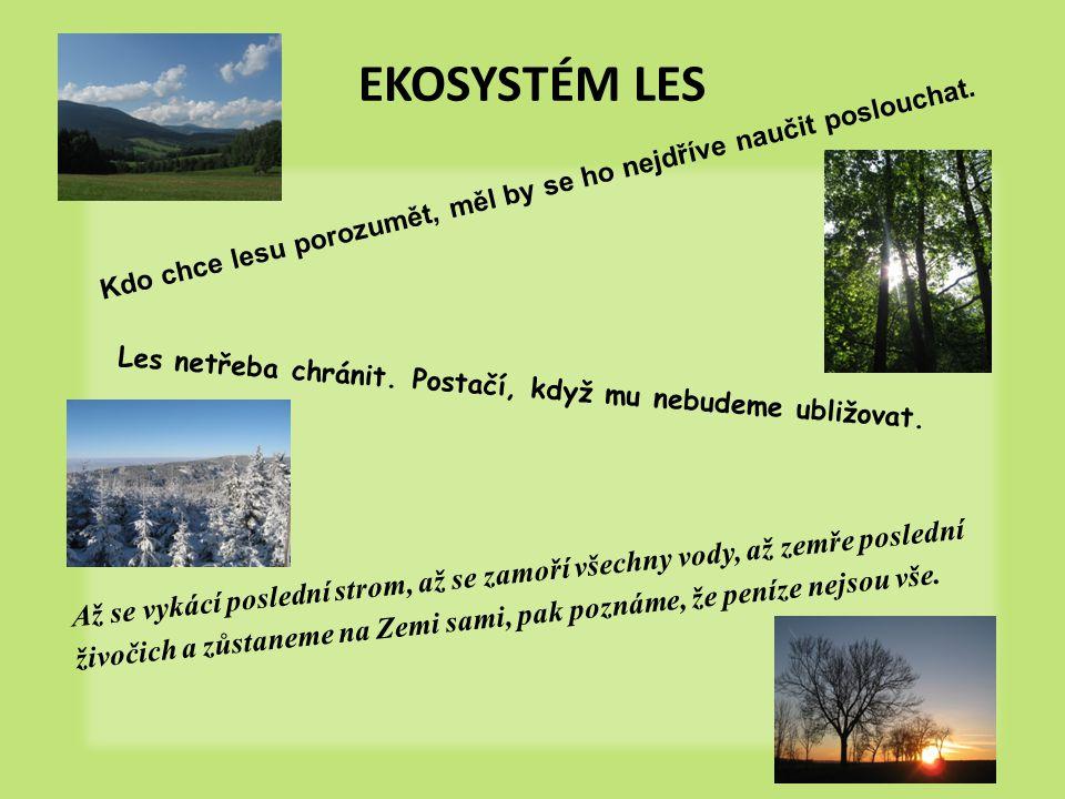 EKOSYSTÉM LES Kdo chce lesu porozumět, měl by se ho nejdříve naučit poslouchat.