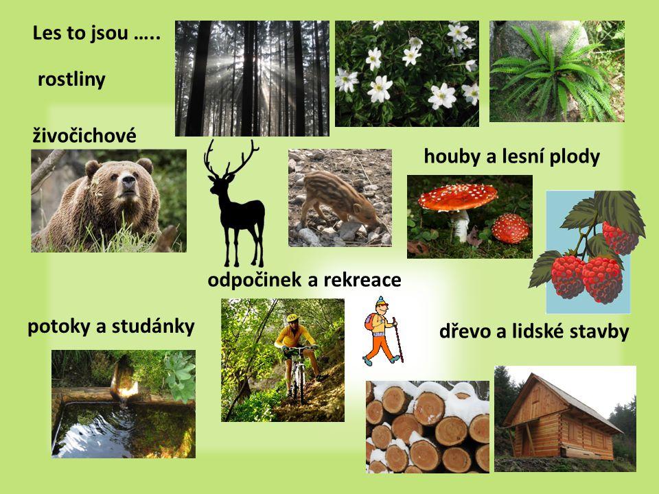 Ekosystém ucelená část přírody, která je ve vztahu s okolím 2 složky živou – organizmy (biocenóza) neživou – př.