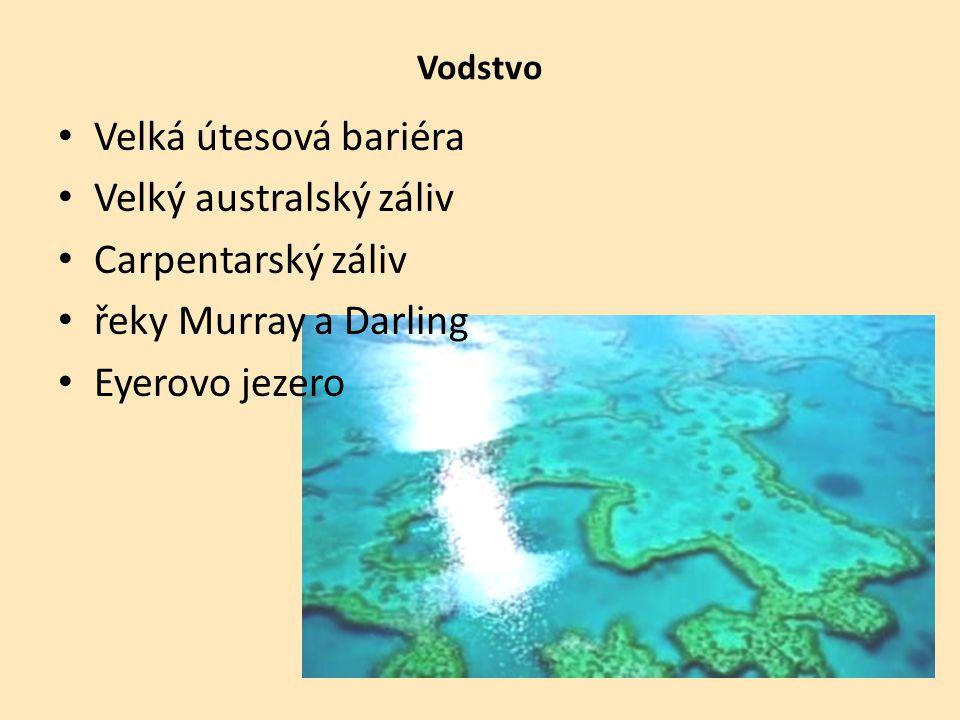 Vodstvo Velká útesová bariéra Velký australský záliv Carpentarský záliv řeky Murray a Darling Eyerovo jezero
