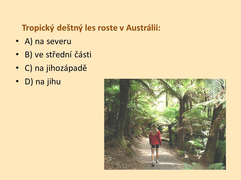 Tropický deštný les roste v Austrálii: A) na severu B) ve střední části C) na jihozápadě D) na jihu