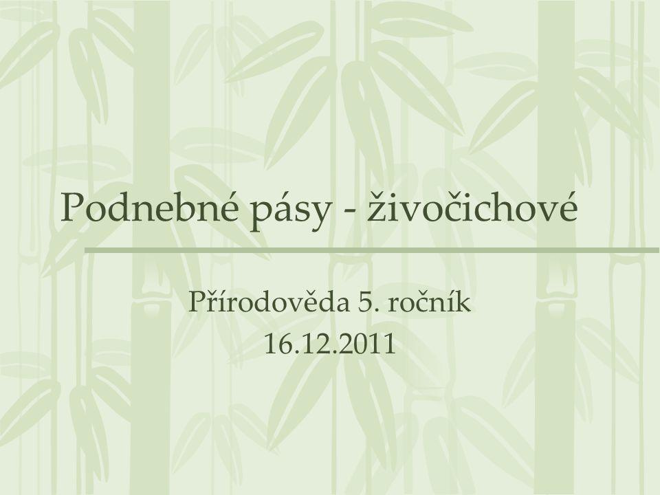Podnebné pásy - živočichové Přírodověda 5. ročník 16.12.2011