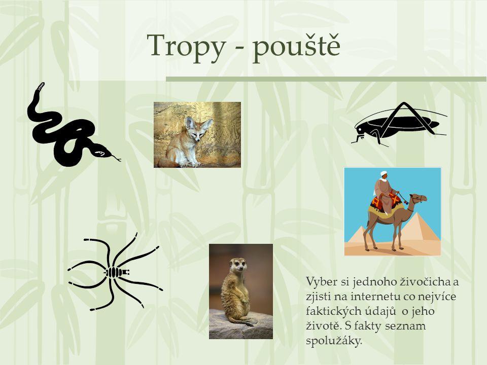 Tropy - pouště Vyber si jednoho živočicha a zjisti na internetu co nejvíce faktických údajů o jeho životě. S fakty seznam spolužáky.