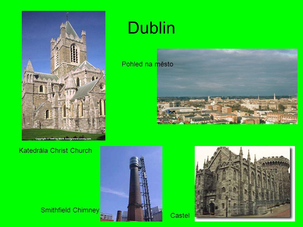 Dublin Katedrála Christ Church Pohled na město Castel Smithfield Chimney