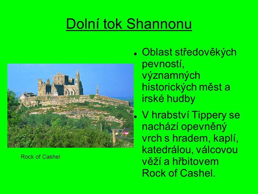 Dolní tok Shannonu Oblast středověkých pevností, významných historických měst a irské hudby V hrabství Tippery se nachází opevněný vrch s hradem, kapl