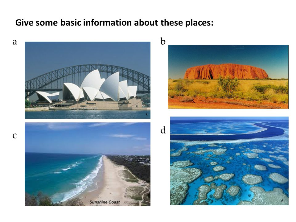 Do you know these Australian animals? a b c d 7 8 910