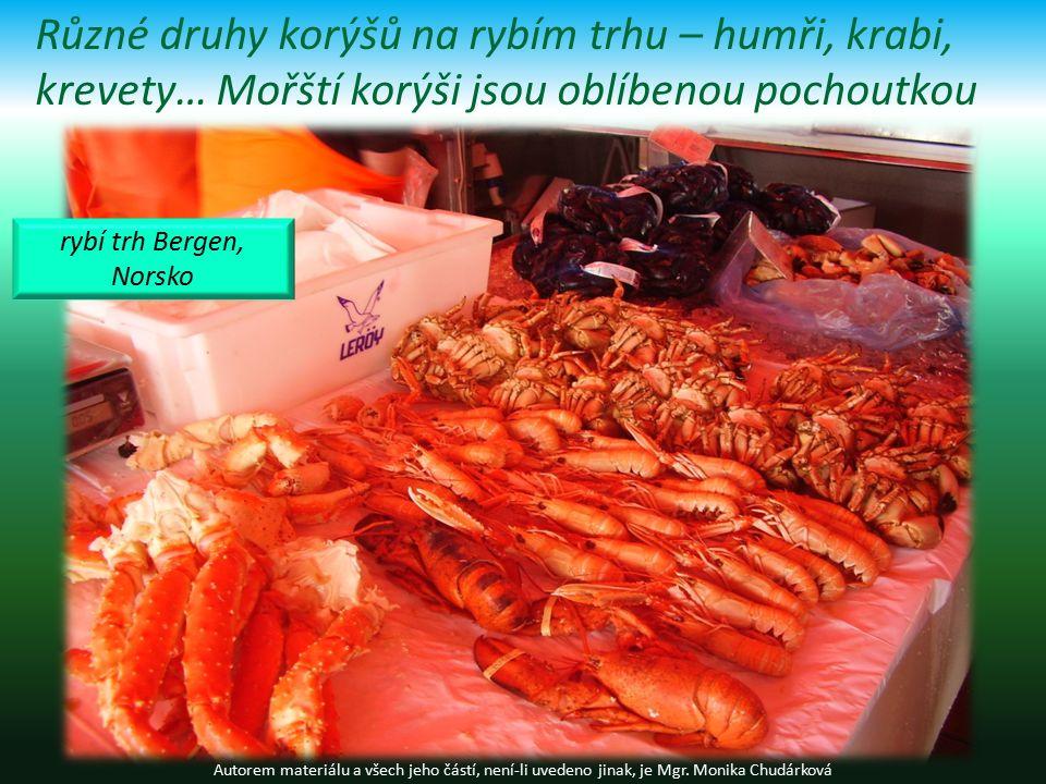 Různé druhy korýšů na rybím trhu – humři, krabi, krevety… Mořští korýši jsou oblíbenou pochoutkou Autorem materiálu a všech jeho částí, není-li uvedeno jinak, je Mgr.