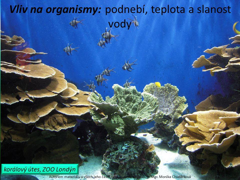 tropická moře: stálá vysoká teplota, mnoho druhů organismů, korálové útesy Autorem materiálu a všech jeho částí, není-li uvedeno jinak, je Mgr.