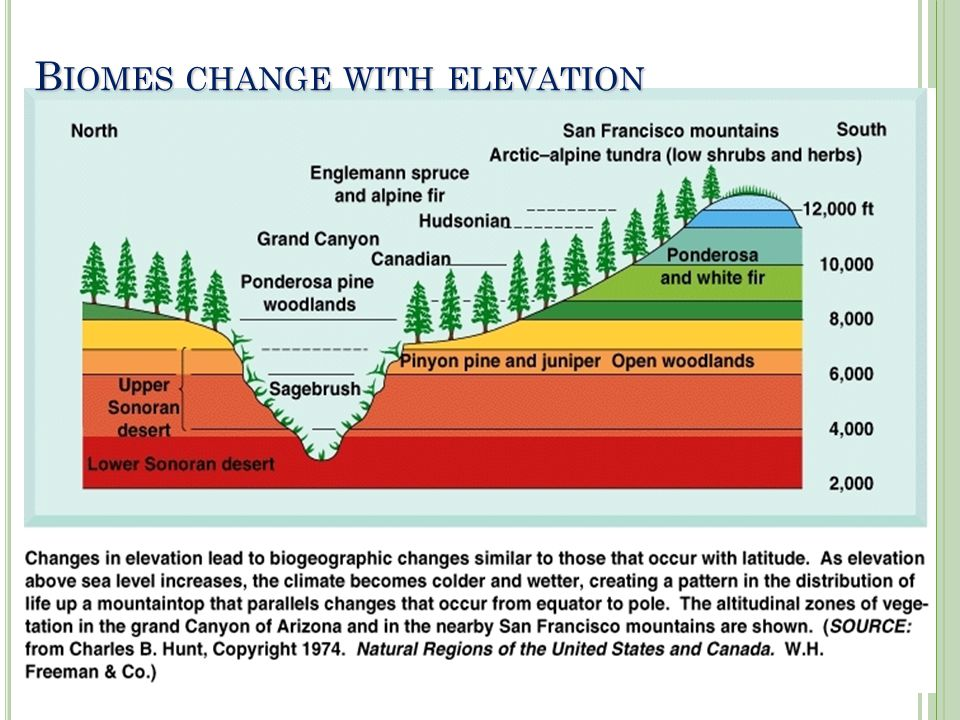 B IOMES CHANGE WITH ELEVATION