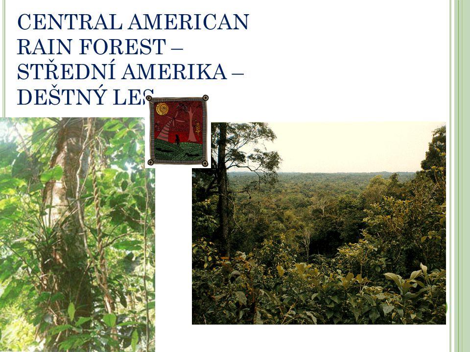 CENTRAL AMERICAN RAIN FOREST – STŘEDNÍ AMERIKA – DEŠTNÝ LES