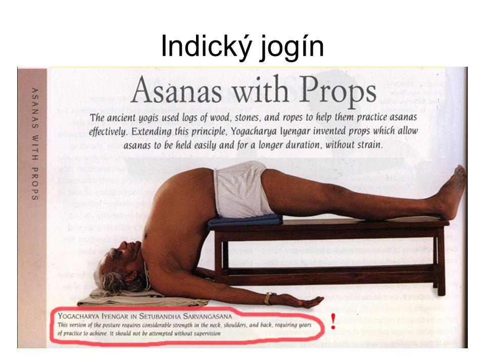 Indický jogín
