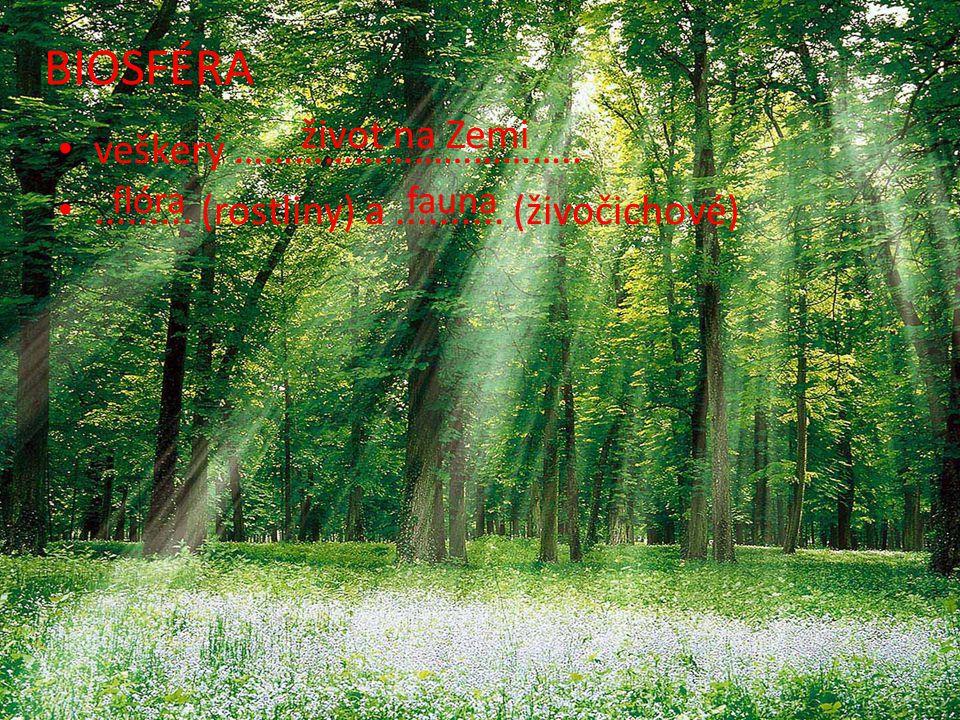veškerý ……………………………...........(rostliny) a..........