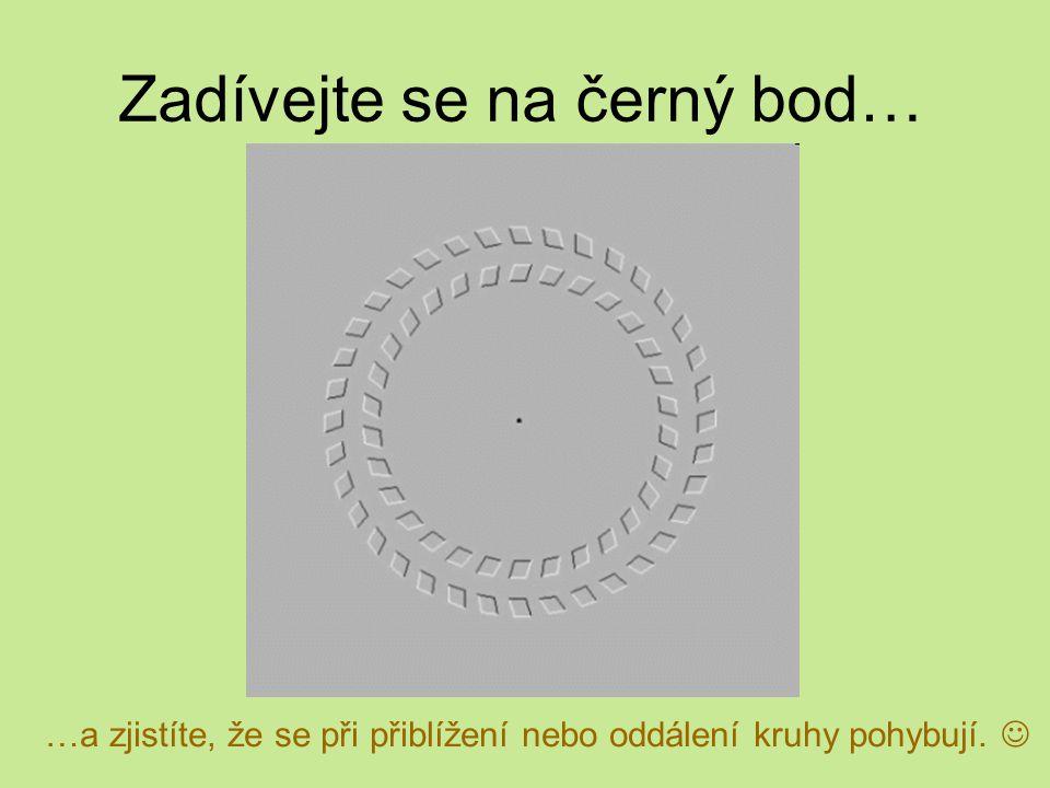 Zadívejte se na černý bod… …a zjistíte, že se při přiblížení nebo oddálení kruhy pohybují.