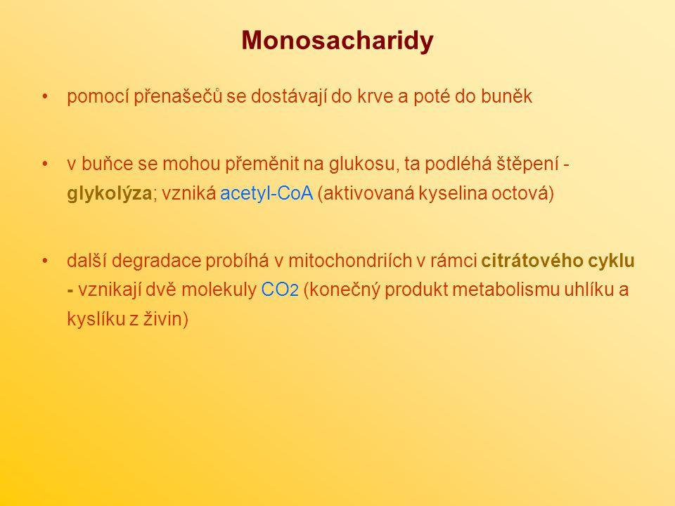 Monosacharidy pomocí přenašečů se dostávají do krve a poté do buněk v buňce se mohou přeměnit na glukosu, ta podléhá štěpení - glykolýza; vzniká acetyl-CoA (aktivovaná kyselina octová) další degradace probíhá v mitochondriích v rámci citrátového cyklu - vznikají dvě molekuly CO 2 (konečný produkt metabolismu uhlíku a kyslíku z živin)