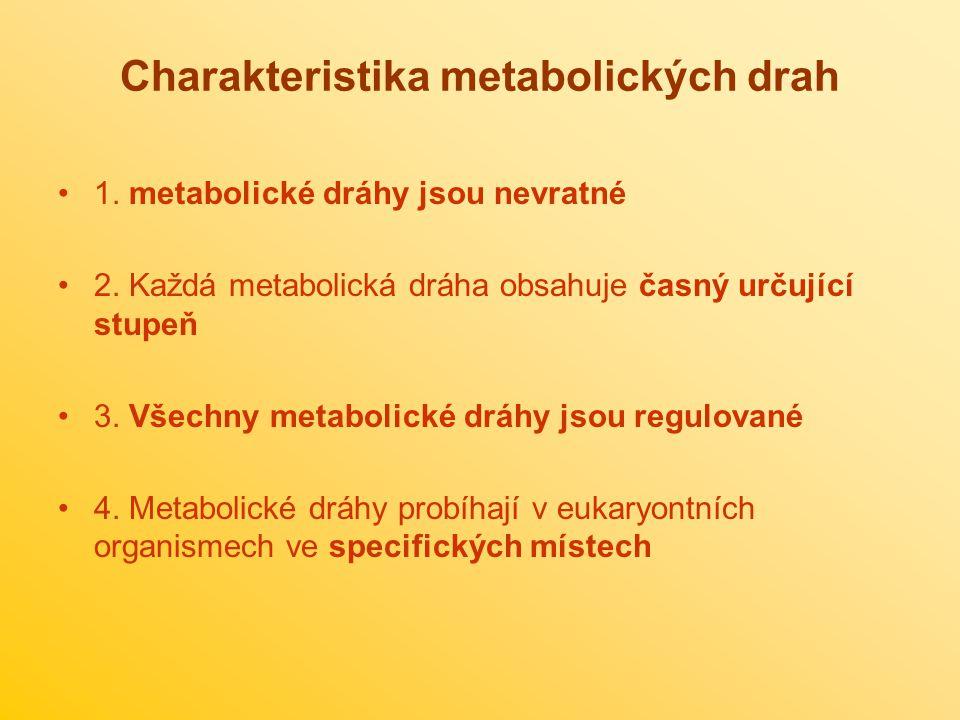 Charakteristika metabolických drah 1.metabolické dráhy jsou nevratné 2.