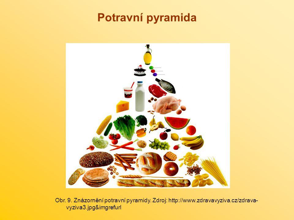 Potravní pyramida Obr.9. Znázornění potravní pyramidy.