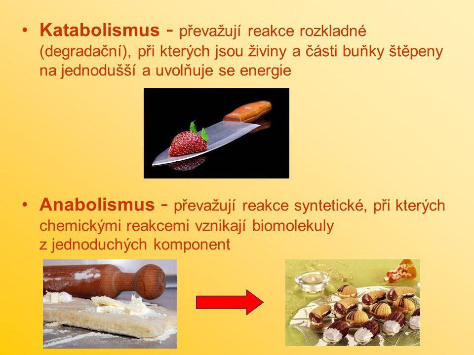 Katabolismus - převažují reakce rozkladné (degradační), při kterých jsou živiny a části buňky štěpeny na jednodušší a uvolňuje se energie Anabolismus - převažují reakce syntetické, při kterých chemickými reakcemi vznikají biomolekuly z jednoduchých komponent