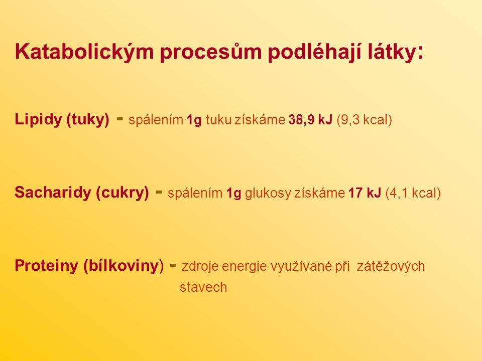 Katabolickým procesům podléhají látky : Lipidy (tuky) - spálením 1g tuku získáme 38,9 kJ (9,3 kcal) Sacharidy (cukry) - spálením 1g glukosy získáme 17 kJ (4,1 kcal) Proteiny (bílkoviny) - zdroje energie využívané při zátěžových stavech