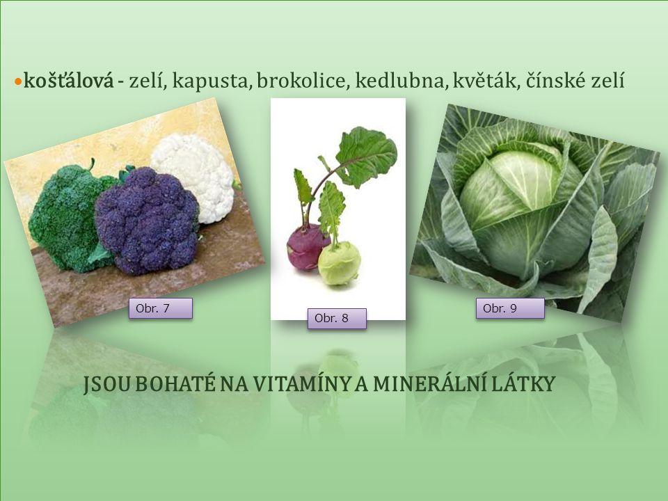 Jsou základní potravinou při přípravě pokrmů cibulová - cibule, pór, česnek - má antioxidační účinky – čistí organizmus od toxinů cibulová - cibule, pór, česnek - má antioxidační účinky – čistí organizmus od toxinů Obr.