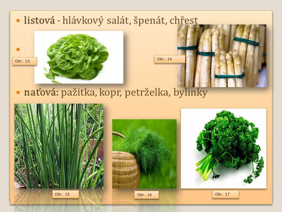 Využití hlavně ve studené kuchyni k přípravě salátů, ale i v teplé kuchyni, meloun k osvěžení plodová - rajče, paprika, lilek, okurky, melouny Obr.