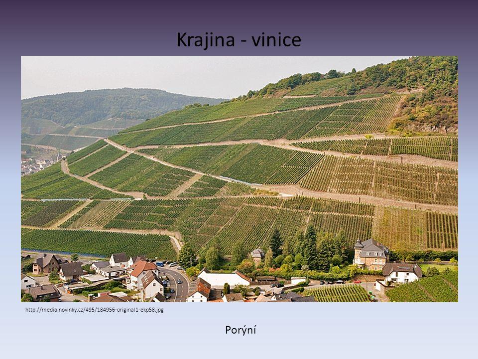 Krajina - vinice http://media.novinky.cz/495/184956-original1-ekp58.jpg Porýní