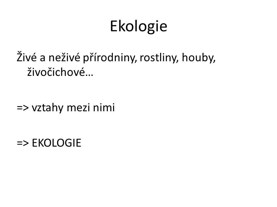 Ekologie Živé a neživé přírodniny, rostliny, houby, živočichové… => vztahy mezi nimi => EKOLOGIE
