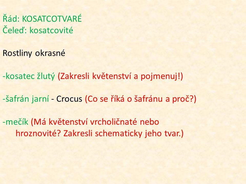 Řád: KOSATCOTVARÉ Čeleď: kosatcovité Rostliny okrasné -kosatec žlutý (Zakresli květenství a pojmenuj!) -šafrán jarní - Crocus (Co se říká o šafránu a