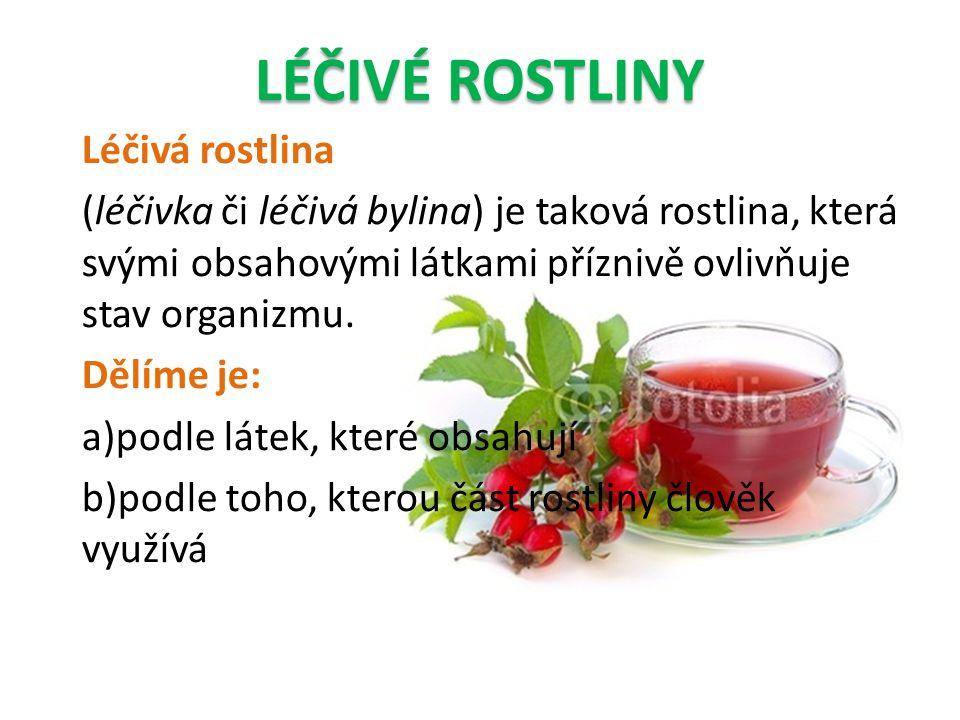 Léčivá rostlina (léčivka či léčivá bylina) je taková rostlina, která svými obsahovými látkami příznivě ovlivňuje stav organizmu. Dělíme je: a)podle lá