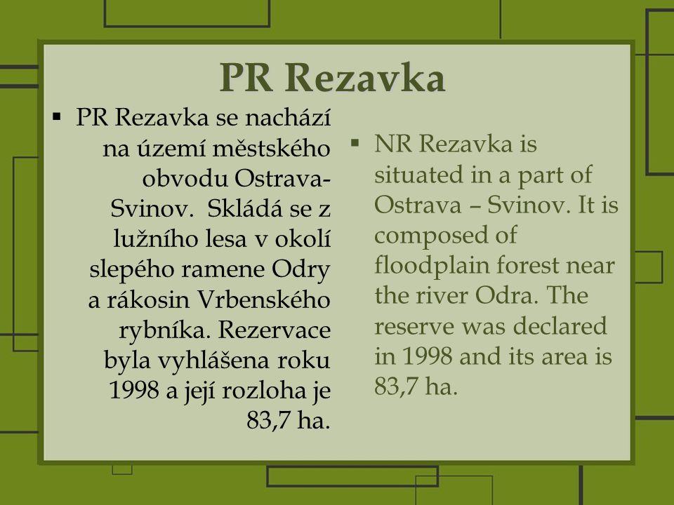 PR Rezavka  PR Rezavka se nachází na území městského obvodu Ostrava- Svinov.