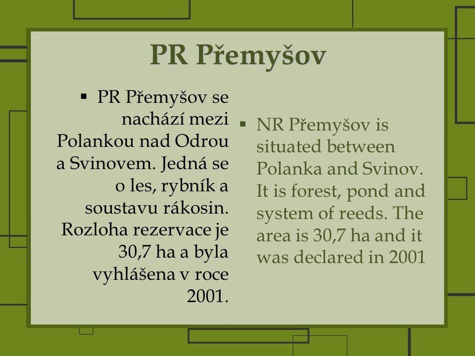 PR Přemyšov  PR Přemyšov se nachází mezi Polankou nad Odrou a Svinovem.