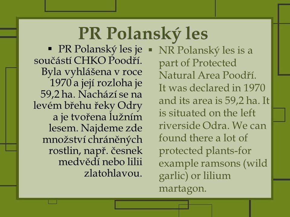 PR Polanský les  PR Polanský les je součástí CHKO Poodří.