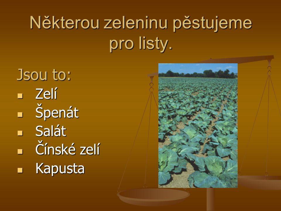 Některou zeleninu pěstujeme pro listy.