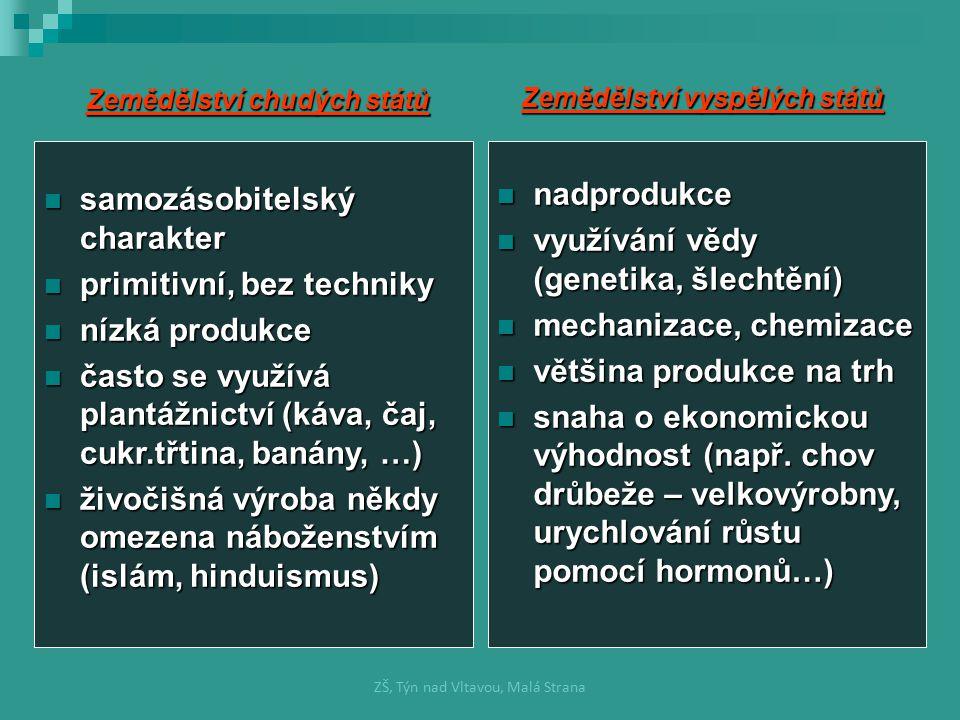 Rostlinná výroba Úkolem je pěstovat plodiny: Úkolem je pěstovat plodiny: 1) pro lidskou výživu 2) jako krmivo pro hospodářská zvířata 3) jako suroviny pro zpracovatelský průmysl Dělení: Dělení: 1) OBILNINY plodiny: pšenice, ječmen, žito, oves, kukuřice, rýže, proso, pohanka 2) LUSKOVINY plodiny: hrách, čočka, fazole, sója 3) OLEJNINY plodiny: řepka olejka, mák, sója, slunečnice, podzemnice olejná, olivovník, palma olejná 4 )OKOPANINY plodiny: řepa cukrová, brambory, cukrová třtina, meloun ZŠ, Týn nad Vltavou, Malá Strana