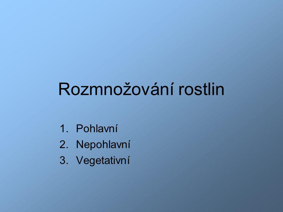 Rozmnožování rostlin 1.Pohlavní 2.Nepohlavní 3.Vegetativní