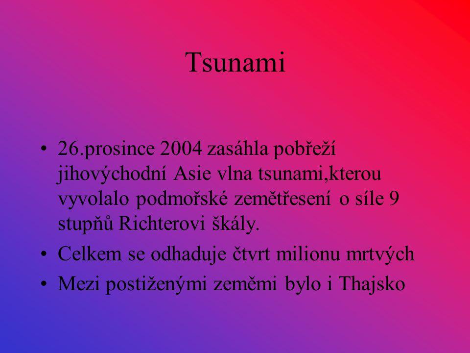 Tsunami 26.prosince 2004 zasáhla pobřeží jihovýchodní Asie vlna tsunami,kterou vyvolalo podmořské zemětřesení o síle 9 stupňů Richterovi škály. Celkem