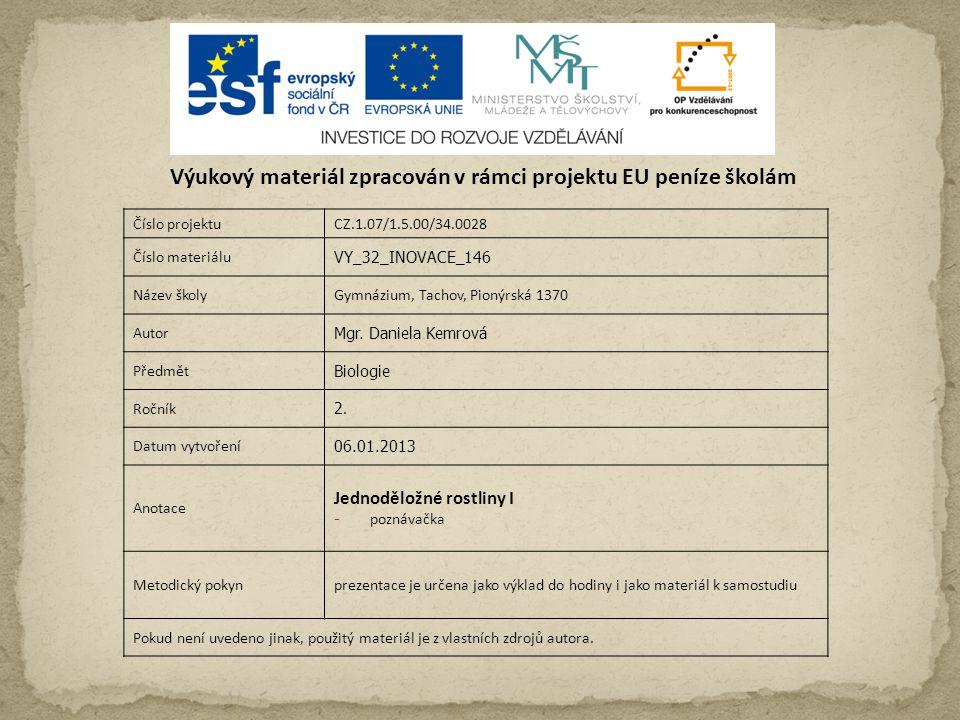 Číslo projektuCZ.1.07/1.5.00/34.0028 Číslo materiálu VY_32_INOVACE_146 Název školyGymnázium, Tachov, Pionýrská 1370 Autor Mgr.
