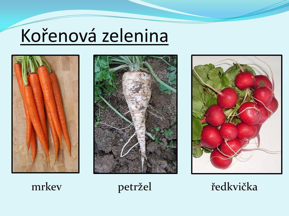 Kořenová zelenina mrkevpetrželředkvička